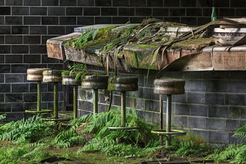 School of Moss